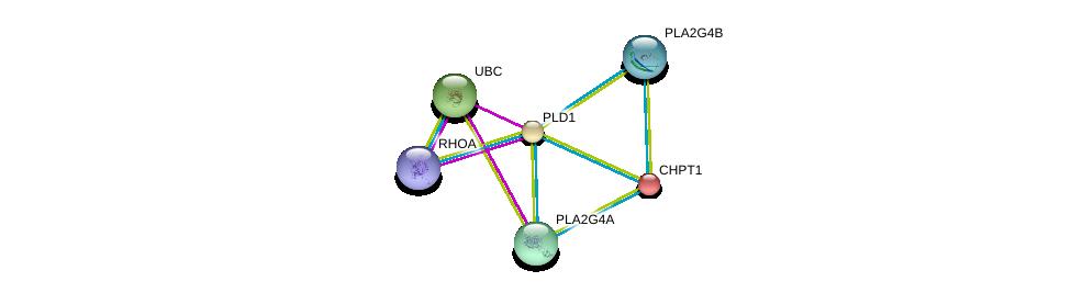 http://string-db.org/version_10/api/image/networkList?limit=0&targetmode=proteins&caller_identity=gene_cards&network_flavor=evidence&identifiers=9606.ENSP00000342793%0d%0a9606.ENSP00000400175%0d%0a9606.ENSP00000344818%0d%0a9606.ENSP00000396045%0d%0a9606.ENSP00000229266%0d%0a9606.ENSP00000356436%0d%0a