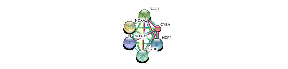 http://string-db.org/version_10/api/image/networkList?limit=0&targetmode=proteins&caller_identity=gene_cards&network_flavor=evidence&identifiers=9606.ENSP00000342848%0d%0a9606.ENSP00000380450%0d%0a9606.ENSP00000348461%0d%0a9606.ENSP00000261623%0d%0a9606.ENSP00000367851%0d%0a9606.ENSP00000380334%0d%0a