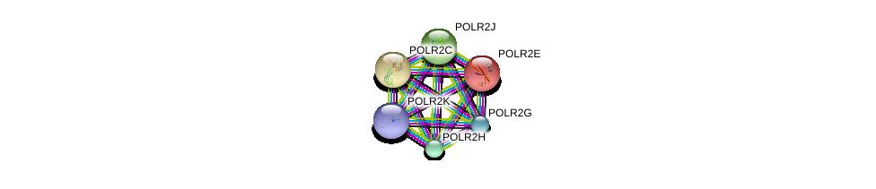 http://string-db.org/version_10/api/image/networkList?limit=0&targetmode=proteins&caller_identity=gene_cards&network_flavor=evidence&identifiers=9606.ENSP00000342889%0d%0a9606.ENSP00000215587%0d%0a9606.ENSP00000292614%0d%0a9606.ENSP00000296223%0d%0a9606.ENSP00000301788%0d%0a9606.ENSP00000219252%0d%0a