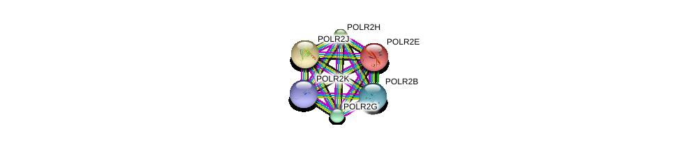 http://string-db.org/version_10/api/image/networkList?limit=0&targetmode=proteins&caller_identity=gene_cards&network_flavor=evidence&identifiers=9606.ENSP00000342889%0d%0a9606.ENSP00000296223%0d%0a9606.ENSP00000301788%0d%0a9606.ENSP00000215587%0d%0a9606.ENSP00000312735%0d%0a9606.ENSP00000292614%0d%0a
