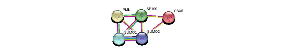 http://string-db.org/version_10/api/image/networkList?limit=0&targetmode=proteins&caller_identity=gene_cards&network_flavor=evidence&identifiers=9606.ENSP00000343023%0d%0a9606.ENSP00000376076%0d%0a9606.ENSP00000268058%0d%0a9606.ENSP00000209875%0d%0a9606.ENSP00000209875%0d%0a9606.ENSP00000405965%0d%0a