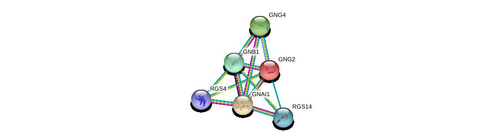 http://string-db.org/version_10/api/image/networkList?limit=0&targetmode=proteins&caller_identity=gene_cards&network_flavor=evidence&identifiers=9606.ENSP00000343027%0d%0a9606.ENSP00000367869%0d%0a9606.ENSP00000386229%0d%0a9606.ENSP00000334448%0d%0a9606.ENSP00000355556%0d%0a9606.ENSP00000397181%0d%0a