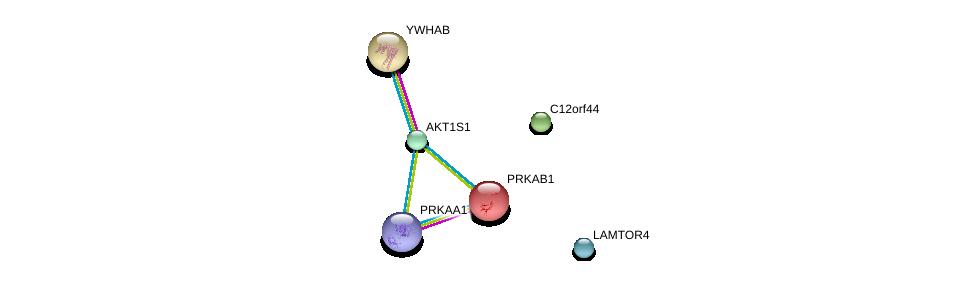 http://string-db.org/version_10/api/image/networkList?limit=0&targetmode=proteins&caller_identity=gene_cards&network_flavor=evidence&identifiers=9606.ENSP00000343118%0d%0a9606.ENSP00000341698%0d%0a9606.ENSP00000346148%0d%0a9606.ENSP00000229328%0d%0a9606.ENSP00000338990%0d%0a9606.ENSP00000300161%0d%0a