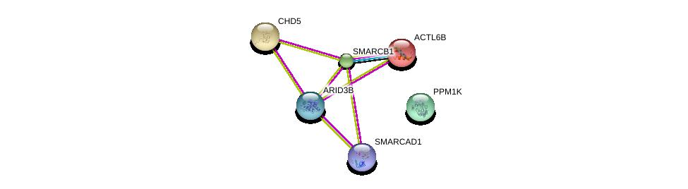 http://string-db.org/version_10/api/image/networkList?limit=0&targetmode=proteins&caller_identity=gene_cards&network_flavor=evidence&identifiers=9606.ENSP00000343126%0d%0a9606.ENSP00000351947%0d%0a9606.ENSP00000262450%0d%0a9606.ENSP00000295908%0d%0a9606.ENSP00000263121%0d%0a9606.ENSP00000160382%0d%0a