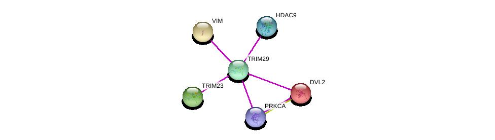 http://string-db.org/version_10/api/image/networkList?limit=0&targetmode=proteins&caller_identity=gene_cards&network_flavor=evidence&identifiers=9606.ENSP00000343129%0d%0a9606.ENSP00000231524%0d%0a9606.ENSP00000005340%0d%0a9606.ENSP00000408617%0d%0a9606.ENSP00000408695%0d%0a9606.ENSP00000224237%0d%0a