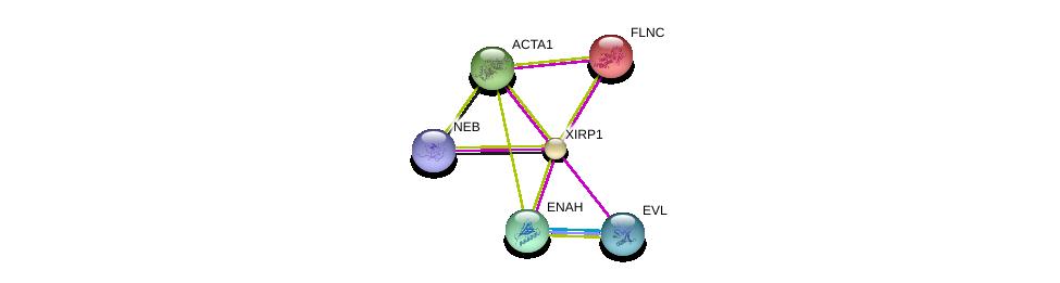 http://string-db.org/version_10/api/image/networkList?limit=0&targetmode=proteins&caller_identity=gene_cards&network_flavor=evidence&identifiers=9606.ENSP00000343140%0d%0a9606.ENSP00000327145%0d%0a9606.ENSP00000355645%0d%0a9606.ENSP00000380505%0d%0a9606.ENSP00000376652%0d%0a9606.ENSP00000355809%0d%0a