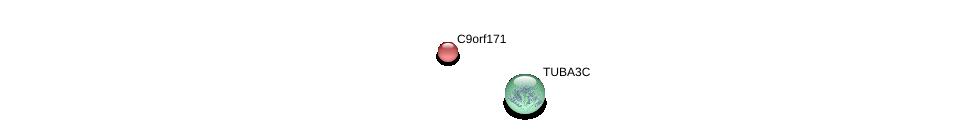 http://string-db.org/version_10/api/image/networkList?limit=0&targetmode=proteins&caller_identity=gene_cards&network_flavor=evidence&identifiers=9606.ENSP00000343290%0d%0a9606.ENSP00000382982%0d%0a