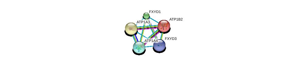 http://string-db.org/version_10/api/image/networkList?limit=0&targetmode=proteins&caller_identity=gene_cards&network_flavor=evidence&identifiers=9606.ENSP00000343314%0d%0a9606.ENSP00000302397%0d%0a9606.ENSP00000389770%0d%0a9606.ENSP00000389770%0d%0a9606.ENSP00000250111%0d%0a9606.ENSP00000357060%0d%0a