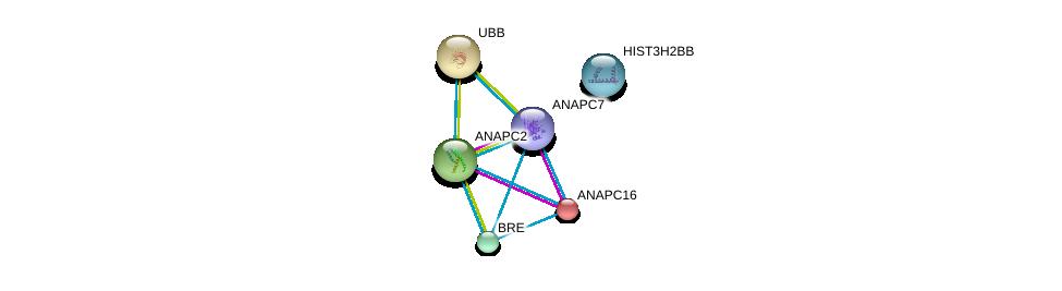 http://string-db.org/version_10/api/image/networkList?limit=0&targetmode=proteins&caller_identity=gene_cards&network_flavor=evidence&identifiers=9606.ENSP00000343412%0d%0a9606.ENSP00000314004%0d%0a9606.ENSP00000304697%0d%0a9606.ENSP00000394394%0d%0a9606.ENSP00000375736%0d%0a9606.ENSP00000299381%0d%0a