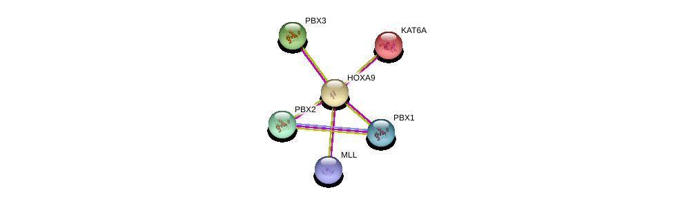 http://string-db.org/version_10/api/image/networkList?limit=0&targetmode=proteins&caller_identity=gene_cards&network_flavor=evidence&identifiers=9606.ENSP00000343619%0d%0a9606.ENSP00000436786%0d%0a9606.ENSP00000265713%0d%0a9606.ENSP00000405890%0d%0a9606.ENSP00000362588%0d%0a9606.ENSP00000364190%0d%0a