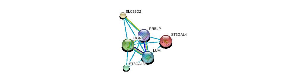 http://string-db.org/version_10/api/image/networkList?limit=0&targetmode=proteins&caller_identity=gene_cards&network_flavor=evidence&identifiers=9606.ENSP00000343924%0d%0a9606.ENSP00000227495%0d%0a9606.ENSP00000253270%0d%0a9606.ENSP00000262551%0d%0a9606.ENSP00000262915%0d%0a9606.ENSP00000266718%0d%0a