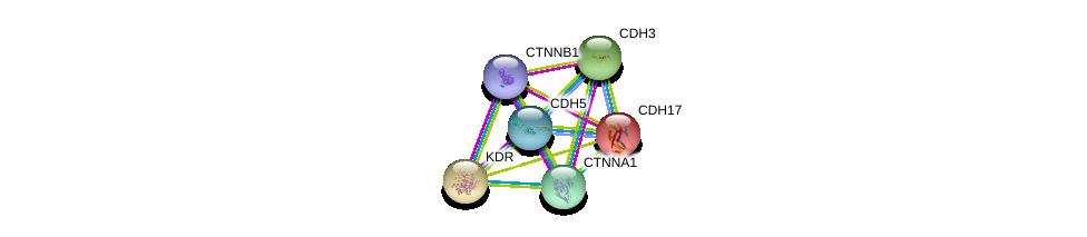 http://string-db.org/version_10/api/image/networkList?limit=0&targetmode=proteins&caller_identity=gene_cards&network_flavor=evidence&identifiers=9606.ENSP00000344115%0d%0a9606.ENSP00000344456%0d%0a9606.ENSP00000304669%0d%0a9606.ENSP00000263923%0d%0a9606.ENSP00000027335%0d%0a9606.ENSP00000264012%0d%0a