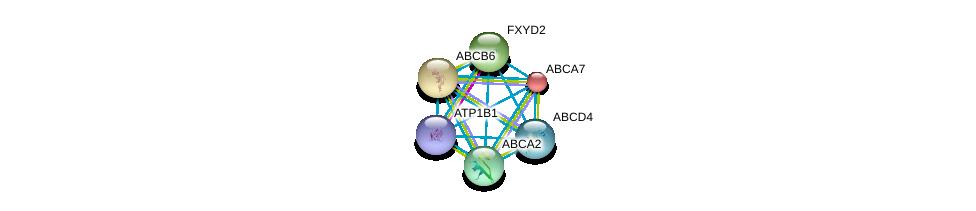 http://string-db.org/version_10/api/image/networkList?limit=0&targetmode=proteins&caller_identity=gene_cards&network_flavor=evidence&identifiers=9606.ENSP00000344155%0d%0a9606.ENSP00000265316%0d%0a9606.ENSP00000349396%0d%0a9606.ENSP00000263094%0d%0a9606.ENSP00000356789%0d%0a9606.ENSP00000292079%0d%0a