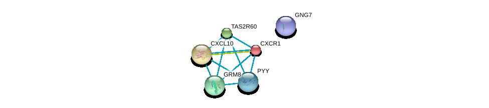 http://string-db.org/version_10/api/image/networkList?limit=0&targetmode=proteins&caller_identity=gene_cards&network_flavor=evidence&identifiers=9606.ENSP00000344173%0d%0a9606.ENSP00000305651%0d%0a9606.ENSP00000371594%0d%0a9606.ENSP00000327724%0d%0a9606.ENSP00000353198%0d%0a9606.ENSP00000295683%0d%0a