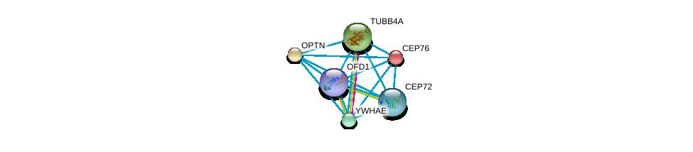 http://string-db.org/version_10/api/image/networkList?limit=0&targetmode=proteins&caller_identity=gene_cards&network_flavor=evidence&identifiers=9606.ENSP00000344314%0d%0a9606.ENSP00000262127%0d%0a9606.ENSP00000263036%0d%0a9606.ENSP00000264071%0d%0a9606.ENSP00000264335%0d%0a9606.ENSP00000264935%0d%0a