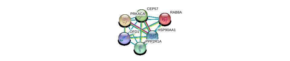 http://string-db.org/version_10/api/image/networkList?limit=0&targetmode=proteins&caller_identity=gene_cards&network_flavor=evidence&identifiers=9606.ENSP00000344314%0d%0a9606.ENSP00000317902%0d%0a9606.ENSP00000309591%0d%0a9606.ENSP00000300935%0d%0a9606.ENSP00000324804%0d%0a9606.ENSP00000335153%0d%0a