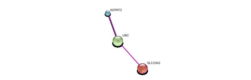 http://string-db.org/version_10/api/image/networkList?limit=0&targetmode=proteins&caller_identity=gene_cards&network_flavor=evidence&identifiers=9606.ENSP00000344322%0d%0a9606.ENSP00000344818%0d%0a9606.ENSP00000360761%0d%0a