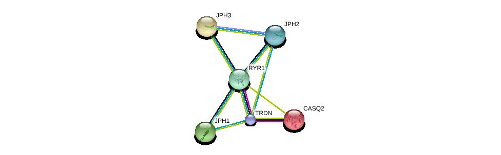 http://string-db.org/version_10/api/image/networkList?limit=0&targetmode=proteins&caller_identity=gene_cards&network_flavor=evidence&identifiers=9606.ENSP00000344488%0d%0a9606.ENSP00000381240%0d%0a9606.ENSP00000362071%0d%0a9606.ENSP00000352608%0d%0a9606.ENSP00000261448%0d%0a9606.ENSP00000284262%0d%0a