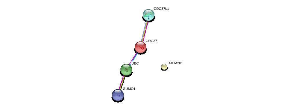 http://string-db.org/version_10/api/image/networkList?limit=0&targetmode=proteins&caller_identity=gene_cards&network_flavor=evidence&identifiers=9606.ENSP00000344503%0d%0a9606.ENSP00000344818%0d%0a9606.ENSP00000376076%0d%0a9606.ENSP00000222005%0d%0a9606.ENSP00000222005%0d%0a9606.ENSP00000371278%0d%0a