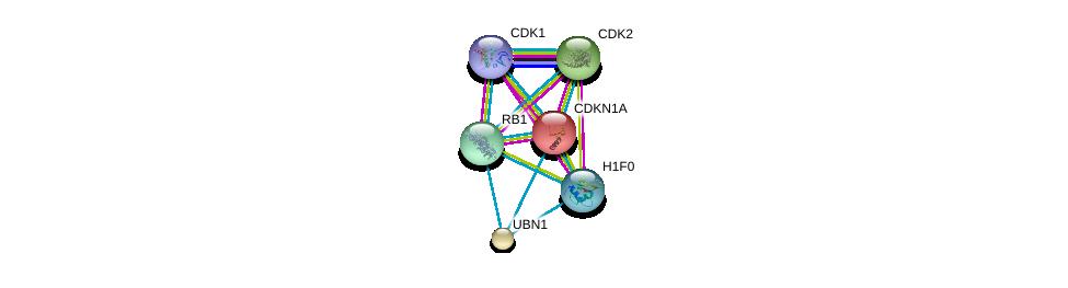 http://string-db.org/version_10/api/image/networkList?limit=0&targetmode=proteins&caller_identity=gene_cards&network_flavor=evidence&identifiers=9606.ENSP00000344504%0d%0a9606.ENSP00000266970%0d%0a9606.ENSP00000378699%0d%0a9606.ENSP00000244741%0d%0a9606.ENSP00000262376%0d%0a9606.ENSP00000267163%0d%0a