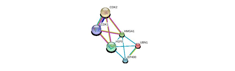 http://string-db.org/version_10/api/image/networkList?limit=0&targetmode=proteins&caller_identity=gene_cards&network_flavor=evidence&identifiers=9606.ENSP00000344504%0d%0a9606.ENSP00000266970%0d%0a9606.ENSP00000378699%0d%0a9606.ENSP00000308227%0d%0a9606.ENSP00000262376%0d%0a9606.ENSP00000374212%0d%0a