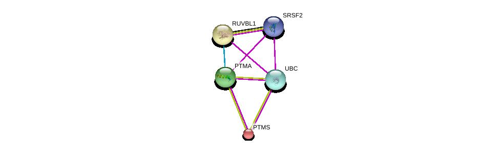 http://string-db.org/version_10/api/image/networkList?limit=0&targetmode=proteins&caller_identity=gene_cards&network_flavor=evidence&identifiers=9606.ENSP00000344547%0d%0a9606.ENSP00000310088%0d%0a9606.ENSP00000344818%0d%0a9606.ENSP00000353089%0d%0a9606.ENSP00000353089%0d%0a9606.ENSP00000318297%0d%0a