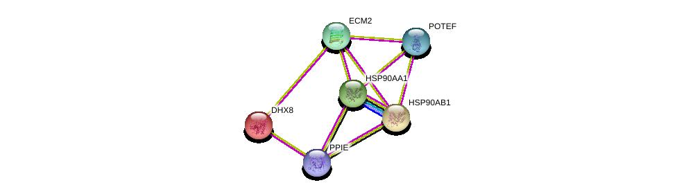 http://string-db.org/version_10/api/image/networkList?limit=0&targetmode=proteins&caller_identity=gene_cards&network_flavor=evidence&identifiers=9606.ENSP00000344758%0d%0a9606.ENSP00000262415%0d%0a9606.ENSP00000361918%0d%0a9606.ENSP00000325875%0d%0a9606.ENSP00000335153%0d%0a9606.ENSP00000350052%0d%0a
