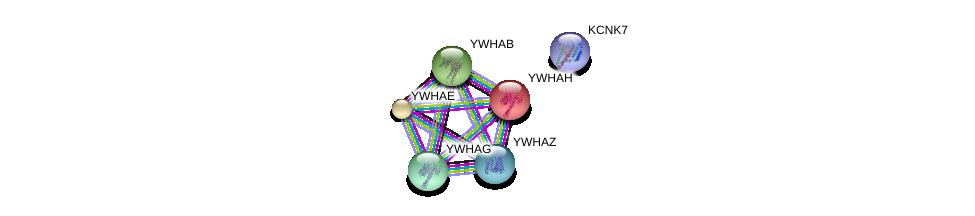 http://string-db.org/version_10/api/image/networkList?limit=0&targetmode=proteins&caller_identity=gene_cards&network_flavor=evidence&identifiers=9606.ENSP00000344820%0d%0a9606.ENSP00000248975%0d%0a9606.ENSP00000264335%0d%0a9606.ENSP00000300161%0d%0a9606.ENSP00000306330%0d%0a9606.ENSP00000309503%0d%0a