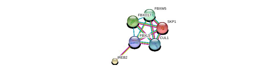 http://string-db.org/version_10/api/image/networkList?limit=0&targetmode=proteins&caller_identity=gene_cards&network_flavor=evidence&identifiers=9606.ENSP00000344866%0d%0a9606.ENSP00000231487%0d%0a9606.ENSP00000326804%0d%0a9606.ENSP00000258886%0d%0a9606.ENSP00000292852%0d%0a9606.ENSP00000313034%0d%0a
