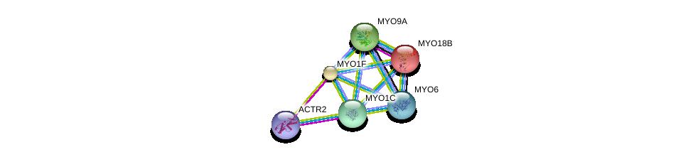 http://string-db.org/version_10/api/image/networkList?limit=0&targetmode=proteins&caller_identity=gene_cards&network_flavor=evidence&identifiers=9606.ENSP00000344871%0d%0a9606.ENSP00000334563%0d%0a9606.ENSP00000348349%0d%0a9606.ENSP00000352834%0d%0a9606.ENSP00000358994%0d%0a9606.ENSP00000367220%0d%0a