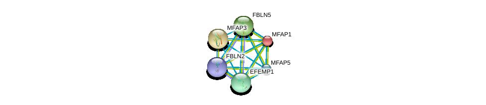 http://string-db.org/version_10/api/image/networkList?limit=0&targetmode=proteins&caller_identity=gene_cards&network_flavor=evidence&identifiers=9606.ENSP00000345008%0d%0a9606.ENSP00000347596%0d%0a9606.ENSP00000322956%0d%0a9606.ENSP00000267812%0d%0a9606.ENSP00000384169%0d%0a9606.ENSP00000352455%0d%0a