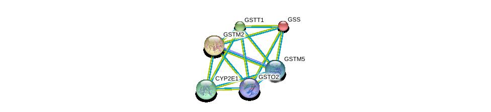 http://string-db.org/version_10/api/image/networkList?limit=0&targetmode=proteins&caller_identity=gene_cards&network_flavor=evidence&identifiers=9606.ENSP00000345023%0d%0a9606.ENSP00000216951%0d%0a9606.ENSP00000241337%0d%0a9606.ENSP00000248935%0d%0a9606.ENSP00000252945%0d%0a9606.ENSP00000256593%0d%0a