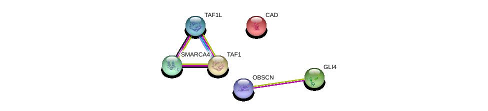 http://string-db.org/version_10/api/image/networkList?limit=0&targetmode=proteins&caller_identity=gene_cards&network_flavor=evidence&identifiers=9606.ENSP00000345024%0d%0a9606.ENSP00000264705%0d%0a9606.ENSP00000455507%0d%0a9606.ENSP00000418379%0d%0a9606.ENSP00000276072%0d%0a9606.ENSP00000350720%0d%0a