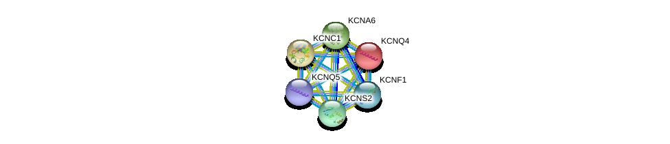 http://string-db.org/version_10/api/image/networkList?limit=0&targetmode=proteins&caller_identity=gene_cards&network_flavor=evidence&identifiers=9606.ENSP00000345055%0d%0a9606.ENSP00000262916%0d%0a9606.ENSP00000265969%0d%0a9606.ENSP00000280684%0d%0a9606.ENSP00000287042%0d%0a9606.ENSP00000295082%0d%0a