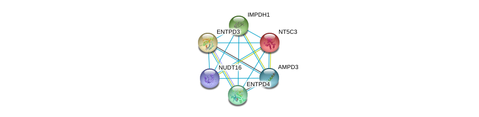 http://string-db.org/version_10/api/image/networkList?limit=0&targetmode=proteins&caller_identity=gene_cards&network_flavor=evidence&identifiers=9606.ENSP00000345096%0d%0a9606.ENSP00000379802%0d%0a9606.ENSP00000242210%0d%0a9606.ENSP00000351520%0d%0a9606.ENSP00000301825%0d%0a9606.ENSP00000422375%0d%0a