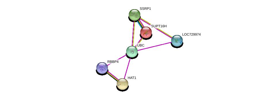 http://string-db.org/version_10/api/image/networkList?limit=0&targetmode=proteins&caller_identity=gene_cards&network_flavor=evidence&identifiers=9606.ENSP00000345151%0d%0a9606.ENSP00000344818%0d%0a9606.ENSP00000216297%0d%0a9606.ENSP00000278412%0d%0a9606.ENSP00000264108%0d%0a9606.ENSP00000362592%0d%0a