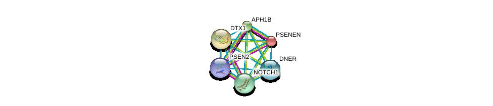 http://string-db.org/version_10/api/image/networkList?limit=0&targetmode=proteins&caller_identity=gene_cards&network_flavor=evidence&identifiers=9606.ENSP00000345229%0d%0a9606.ENSP00000222266%0d%0a9606.ENSP00000257600%0d%0a9606.ENSP00000261879%0d%0a9606.ENSP00000277541%0d%0a9606.ENSP00000355747%0d%0a