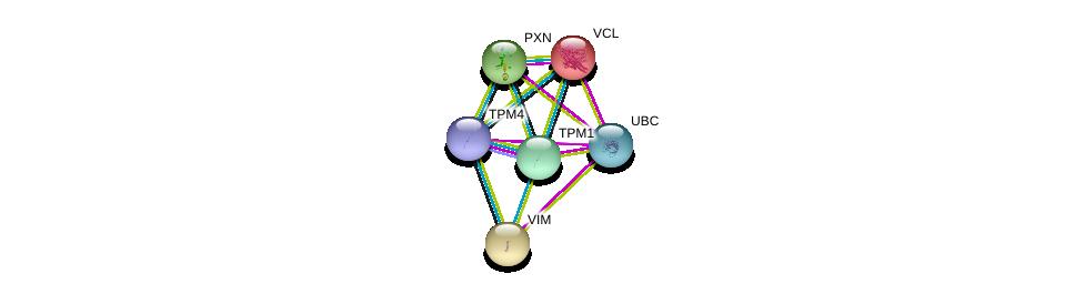 http://string-db.org/version_10/api/image/networkList?limit=0&targetmode=proteins&caller_identity=gene_cards&network_flavor=evidence&identifiers=9606.ENSP00000345230%0d%0a9606.ENSP00000267996%0d%0a9606.ENSP00000344818%0d%0a9606.ENSP00000211998%0d%0a9606.ENSP00000224237%0d%0a9606.ENSP00000228307%0d%0a