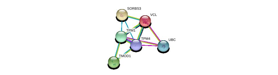 http://string-db.org/version_10/api/image/networkList?limit=0&targetmode=proteins&caller_identity=gene_cards&network_flavor=evidence&identifiers=9606.ENSP00000345230%0d%0a9606.ENSP00000267996%0d%0a9606.ENSP00000344818%0d%0a9606.ENSP00000259365%0d%0a9606.ENSP00000211998%0d%0a9606.ENSP00000240123%0d%0a