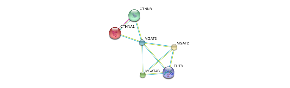 http://string-db.org/version_10/api/image/networkList?limit=0&targetmode=proteins&caller_identity=gene_cards&network_flavor=evidence&identifiers=9606.ENSP00000345270%0d%0a9606.ENSP00000304669%0d%0a9606.ENSP00000307423%0d%0a9606.ENSP00000338487%0d%0a9606.ENSP00000344456%0d%0a9606.ENSP00000353910%0d%0a