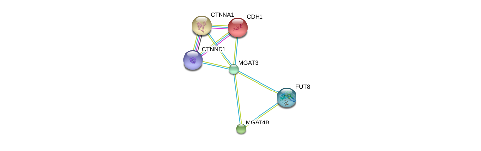 http://string-db.org/version_10/api/image/networkList?limit=0&targetmode=proteins&caller_identity=gene_cards&network_flavor=evidence&identifiers=9606.ENSP00000345270%0d%0a9606.ENSP00000353910%0d%0a9606.ENSP00000261769%0d%0a9606.ENSP00000382004%0d%0a9606.ENSP00000304669%0d%0a9606.ENSP00000338487%0d%0a
