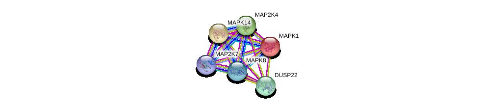 http://string-db.org/version_10/api/image/networkList?limit=0&targetmode=proteins&caller_identity=gene_cards&network_flavor=evidence&identifiers=9606.ENSP00000345281%0d%0a9606.ENSP00000353483%0d%0a9606.ENSP00000229794%0d%0a9606.ENSP00000215832%0d%0a9606.ENSP00000381066%0d%0a9606.ENSP00000262445%0d%0a