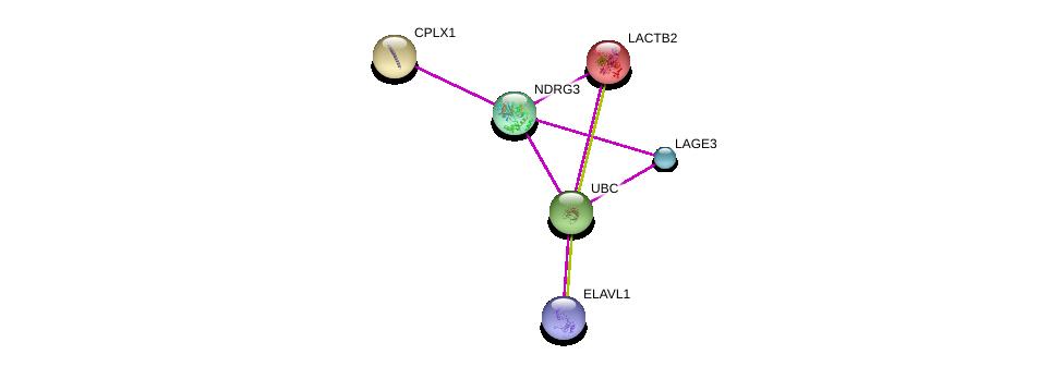 http://string-db.org/version_10/api/image/networkList?limit=0&targetmode=proteins&caller_identity=gene_cards&network_flavor=evidence&identifiers=9606.ENSP00000345292%0d%0a9606.ENSP00000344818%0d%0a9606.ENSP00000305613%0d%0a9606.ENSP00000276590%0d%0a9606.ENSP00000349923%0d%0a9606.ENSP00000385269%0d%0a