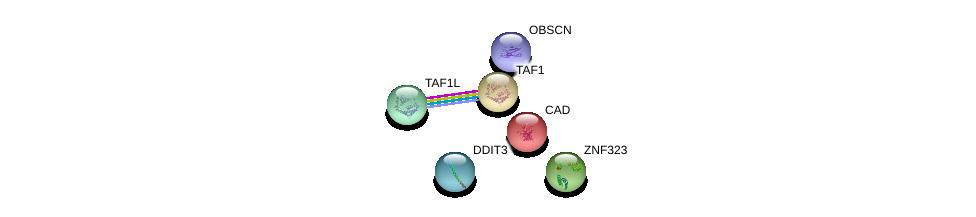 http://string-db.org/version_10/api/image/networkList?limit=0&targetmode=proteins&caller_identity=gene_cards&network_flavor=evidence&identifiers=9606.ENSP00000345339%0d%0a9606.ENSP00000447803%0d%0a9606.ENSP00000264705%0d%0a9606.ENSP00000455507%0d%0a9606.ENSP00000418379%0d%0a9606.ENSP00000276072%0d%0a