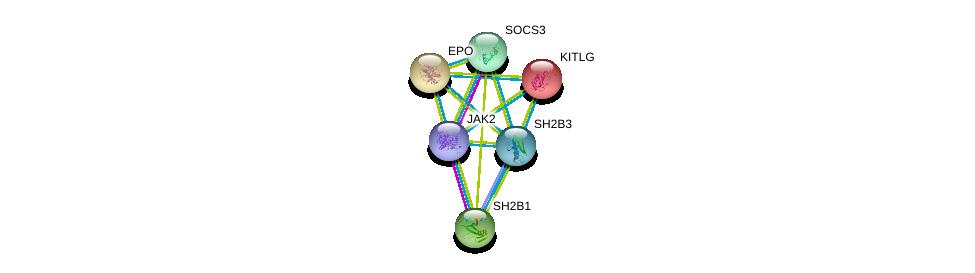 http://string-db.org/version_10/api/image/networkList?limit=0&targetmode=proteins&caller_identity=gene_cards&network_flavor=evidence&identifiers=9606.ENSP00000345492%0d%0a9606.ENSP00000371067%0d%0a9606.ENSP00000330341%0d%0a9606.ENSP00000321221%0d%0a9606.ENSP00000252723%0d%0a9606.ENSP00000228280%0d%0a