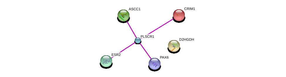 http://string-db.org/version_10/api/image/networkList?limit=0&targetmode=proteins&caller_identity=gene_cards&network_flavor=evidence&identifiers=9606.ENSP00000345494%0d%0a9606.ENSP00000339404%0d%0a9606.ENSP00000280527%0d%0a9606.ENSP00000368401%0d%0a9606.ENSP00000315351%0d%0a9606.ENSP00000343925%0d%0a