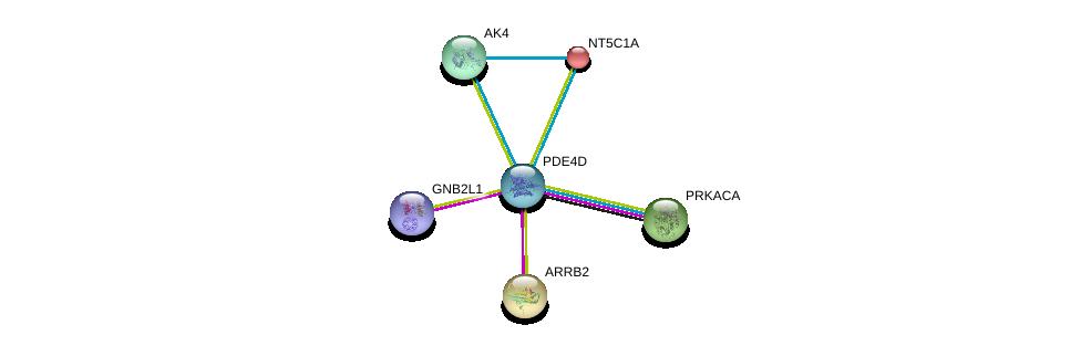 http://string-db.org/version_10/api/image/networkList?limit=0&targetmode=proteins&caller_identity=gene_cards&network_flavor=evidence&identifiers=9606.ENSP00000345502%0d%0a9606.ENSP00000309591%0d%0a9606.ENSP00000269260%0d%0a9606.ENSP00000426909%0d%0a9606.ENSP00000322175%0d%0a9606.ENSP00000235628%0d%0a