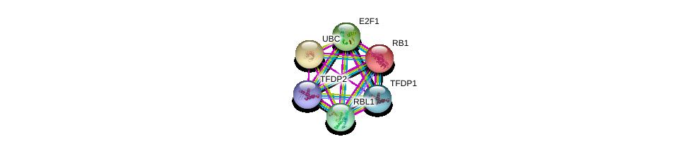 http://string-db.org/version_10/api/image/networkList?limit=0&targetmode=proteins&caller_identity=gene_cards&network_flavor=evidence&identifiers=9606.ENSP00000345571%0d%0a9606.ENSP00000344818%0d%0a9606.ENSP00000267163%0d%0a9606.ENSP00000420616%0d%0a9606.ENSP00000364519%0d%0a9606.ENSP00000362768%0d%0a