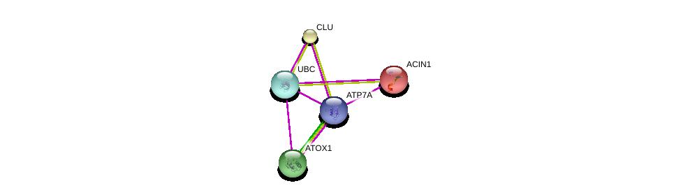 http://string-db.org/version_10/api/image/networkList?limit=0&targetmode=proteins&caller_identity=gene_cards&network_flavor=evidence&identifiers=9606.ENSP00000345728%0d%0a9606.ENSP00000316854%0d%0a9606.ENSP00000344818%0d%0a9606.ENSP00000262710%0d%0a9606.ENSP00000315130%0d%0a9606.ENSP00000315130%0d%0a