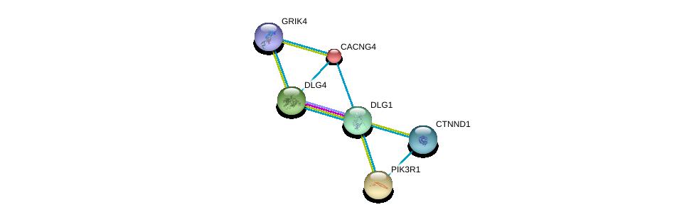 http://string-db.org/version_10/api/image/networkList?limit=0&targetmode=proteins&caller_identity=gene_cards&network_flavor=evidence&identifiers=9606.ENSP00000345731%0d%0a9606.ENSP00000262138%0d%0a9606.ENSP00000274335%0d%0a9606.ENSP00000293813%0d%0a9606.ENSP00000382004%0d%0a9606.ENSP00000404063%0d%0a